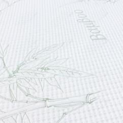 Bamboo-B100
